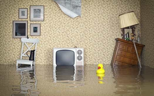 Home & Contents Insurance ? Hints & Tips