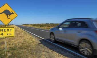 Five strange car insurance claims