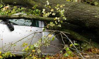 storm damage car insurance