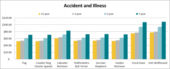 Dog insurance and price of accident and illness cover