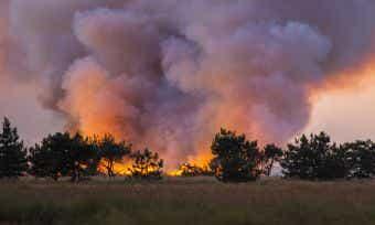 """ICA: SA Bushfires Declared a """"Catastrophe"""""""