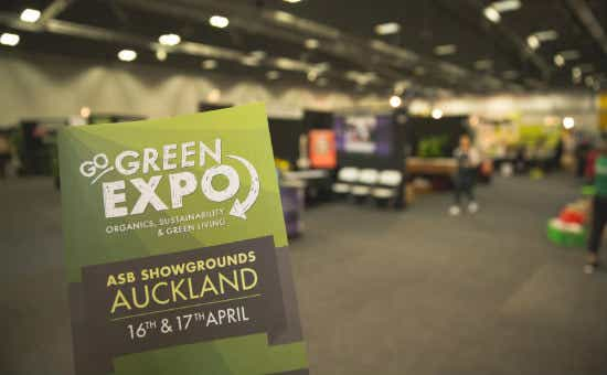 The Go Green Expo gets bigger and bigger every year.