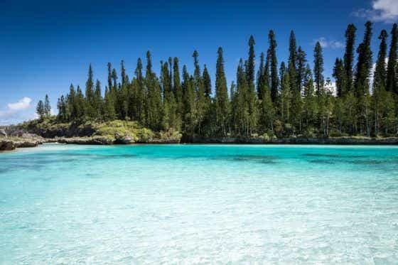 Tropical Beach Paradise New Caledonia
