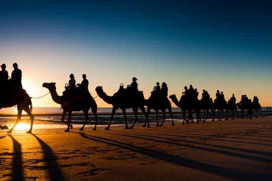 Holiday Activities Camel Safari
