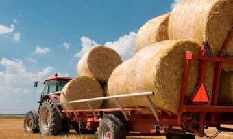 Australian Agriculture: The Big Winner In The TTP Agreement