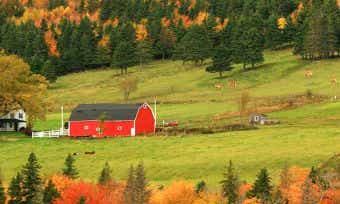 Should you buy acreage or rural property?