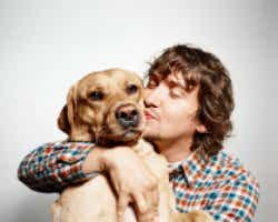 Case study pet insurance