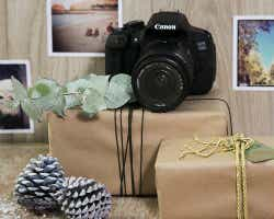 Gumtree camera