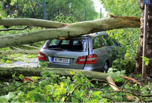Insurers & Government Face Off Over Cyclone-Prone North QLD   Canstar