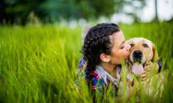 Dog Baiting Warning: What To Look Out For
