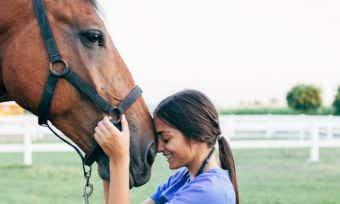 Horse Insurance In Australia