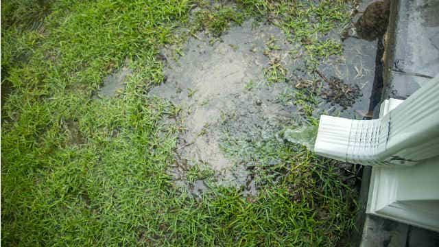 rainwater drain home