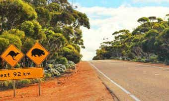 Car Insurance Policies For Foreigners In Australia - Things to Know