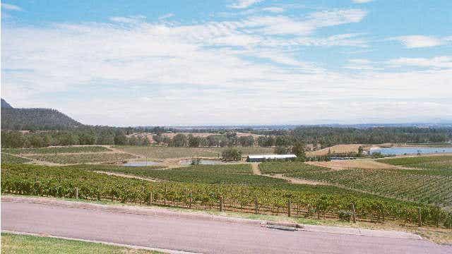 Road trip - Audrey Wilkinson winery