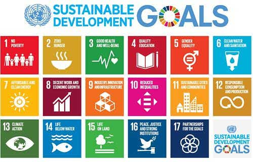 Impact Investing and Sustainable Development Goals