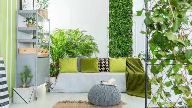 sustainable home design living wall