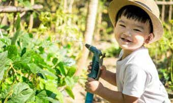 Woolworths to follow Ooshies with little Discovery Garden seed promotion
