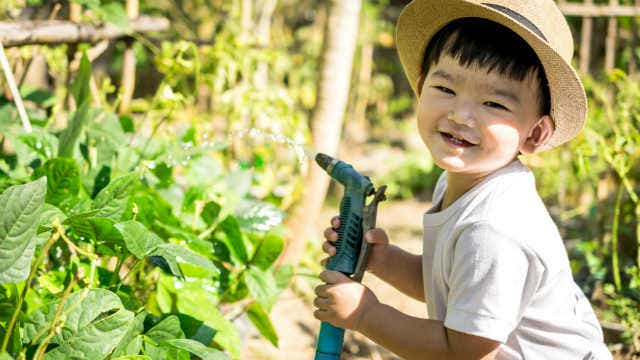 A boy gardening