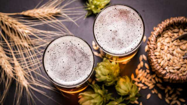 A picture of two beers with wheat and hops and grain.