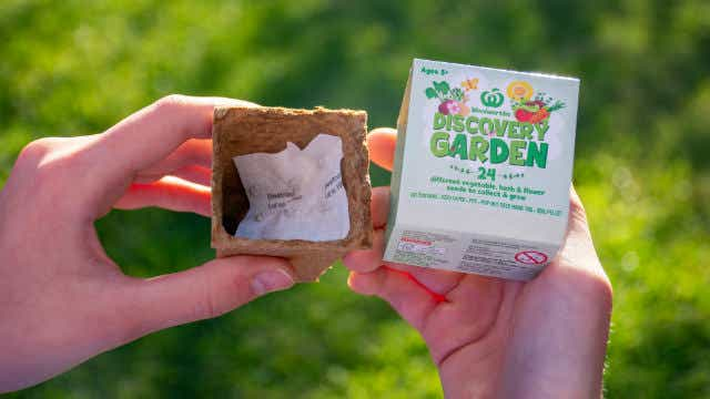The Woolworths Discovery Garden seedling kit. One kit is given to shoppers every time they spend $30. Image: Daria Ni (Shutterstock)