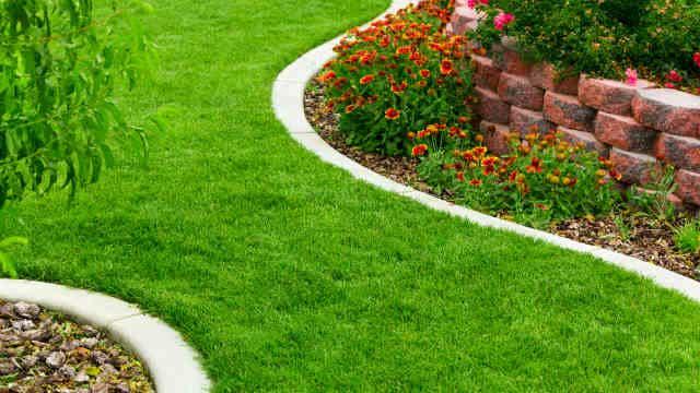Concrete garden ending. Image: Topseller (Shutterstock)