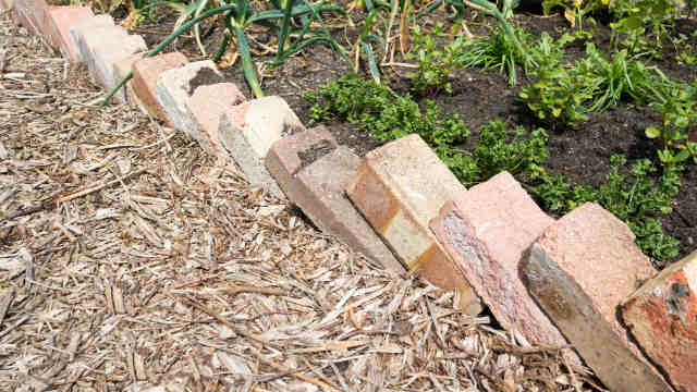 Bricks used as garden edging. Image: Eag1eEyes (Shutterstock)