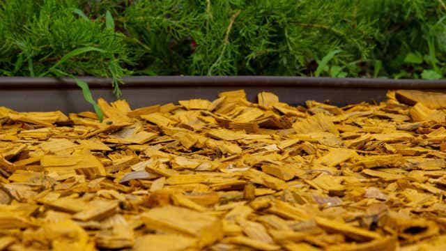 Plastic garden edging. Image: Andrii Chagovets (Shutterstock)