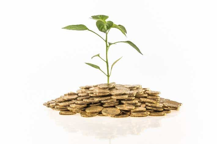 Plant growing out of money | Canstar