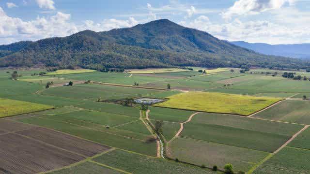 Mackay sugar cane_Property hotspots
