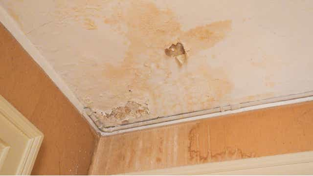 Water damage and damp stains may be sign of plumbing problems