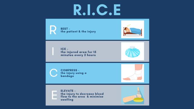 RICE Infographic