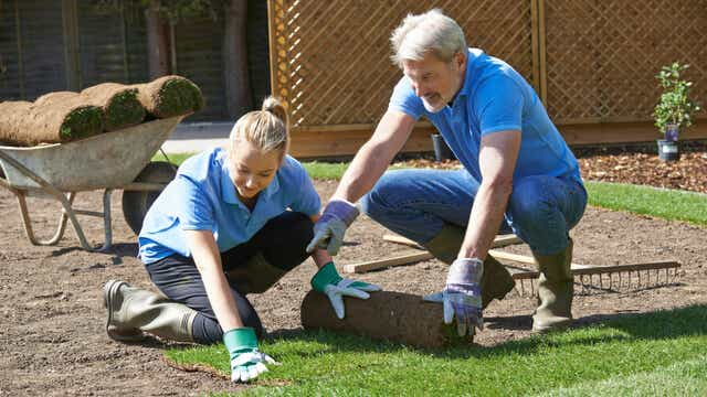Cost Of Landscaping Your Yard