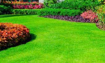 Ground control: How much would backyard landscaping cost?