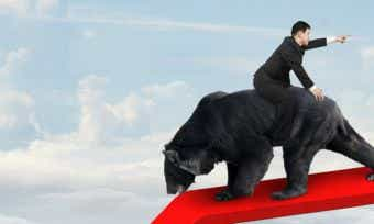 Your bear market survival guide