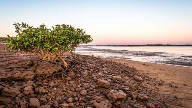 Port Hedland, WA