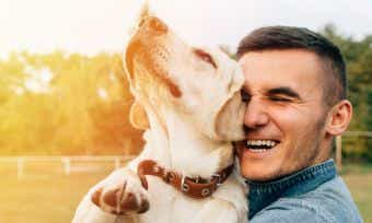 Which pet insurer has the most satisfied customers in 2020?