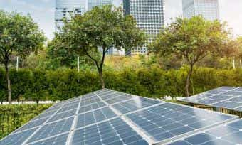 How to find green and sustainable investment options